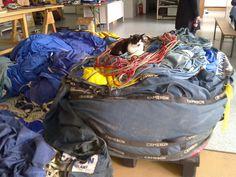 Katze auf einem geschlossenen Heißluftballon Bags, Maine Coon Cats, Cats, Handbags, Bag, Totes, Hand Bags
