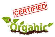 Gardening and Horticulture: The Straight Facts About Aquaponics4You