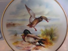 Mallard ducks plate, Collectors plate,  8 inches across, water birds, female just landing, A J L gift ware, Stoke on Trent, by MaddisonsRainbow on Etsy