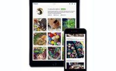 PageLines- social-media.jpg