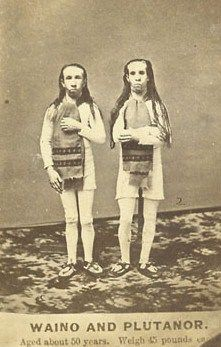 Barney (born 1827) and his older brother Hiram were two mentally impaired dwarves who were born and raised on an Ohio farm.  Despite their tiny size:said to stand 4o inches and weigh 45 lbs. Farm labor had made them strong, endowing them with the ability to lift heavy weights (up to 300 lbs) They were given the stage names Waino and Plutanor, two gentlemen from the exotic land of Borneo. Years later, they were hired for P.T. Barnum's travelling shows. Hiram passed way in 1905; Barney in…