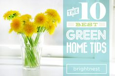 10 useful #tips to having a #green home!