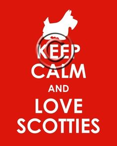 Keep calm and love scotties
