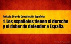 CONSTITUCION ESPAÑOLA ARTICULO