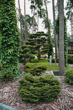 """Фирменный «почерк» ARCADIA GARDEN выражается в разноплановости стилевых решений каждого проекта сада. Такой подход к ландшафтному дизайну позволяет учесть весь комплекс факторов, определяющих """"дух места"""": природные условия, особенности рельефа, стиль архитектуры, окружение и пожелания заказчиков. Garden Landscape Design, Landscape Architecture, Garden Landscaping, Nature Hd, Forest Garden, Contemporary Garden, Yard Design, Tropical Garden, Topiary"""