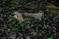 Fallen, Forgotten I (Kensel Green)