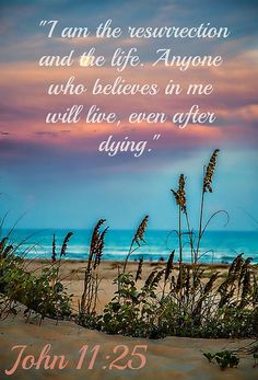 John 11:25. ...anyone who believes in Me, will live !