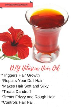 DIY Hibiscus Hair Oil for Hair Growth and Healthy Hair ! This hair oil is super easy to make. This hibiscus hair oil has been in our family for generations. I have been a regular user of Hibiscus oil since childhood. I still remember my Mom used to ma Hair Remedies For Growth, Hair Growth Treatment, Hair Growth Tips, Oil For Hair Growth, Hair Tips, Hair Treatments, Pelo Natural, Natural Hair Care, Natural Hair Styles