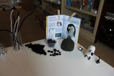 beautiful provocation (Play At Home Mom LLC: The beginning and end of color)