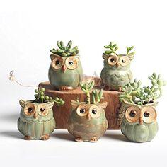 Mini Ceramic Owl Succulent Plant Container Pot Flower Planter Garden Decor Gift