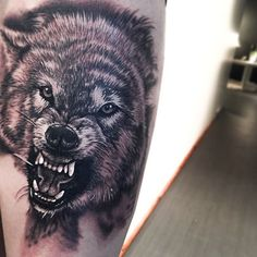 Fun little doggy from today  done at @empire.collective #empirecollective #wolf #wolftattoo #blackandgrey #blackandgreytattoo #prahran #chapelstreet