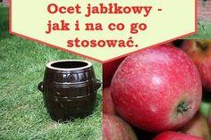 ocet jabłkowy Plum, Mango, Apple, Fruit, Vegetables, Manga, Apple Fruit, Vegetable Recipes, Apples