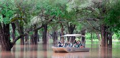 Guests enjoying a magical experience boating down the Luangwa River with Robin Pope Safaris