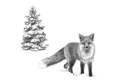Little fox. Christmas card made by www.illustratemyday.com