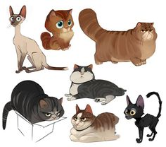 Character illustration, character sketches, illustration art, cat design, a Character Design Cartoon, Cat Character, Character Sketches, Character Design Inspiration, Character Illustration, Illustration Cat, Cat Illustrations, Cartoon Design, Warrior Cats