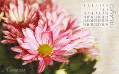 Evamar Fotografía: Ha llegado Mayo, el mes más florido del año + cale...