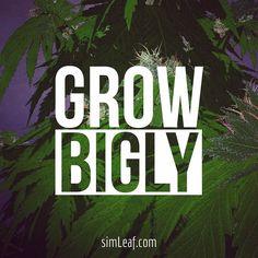 Grow Bigly