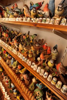 Bet this lot didn't come cheep ...  Man hoards collection of 20,000 birds
