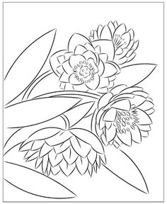 Nicole's Free Coloring Pages: March 2020 Flower Coloring Pages, Free Coloring Pages, Winter Princess, Mysterious Girl, 10 December, Modern Princess, Baby Goats, Yellow Leaves, Santa Letter