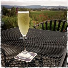 Wine Snob? Perhaps. 10 Tips for Wine-ing it Up in Napa Valley (California)