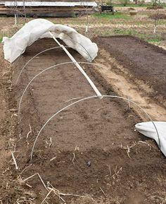 How to Make Cheap Garden Beds