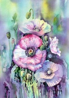 Watercolor flowers - Shirley Poppies by Ann Mortimer Watercolour Painting, Watercolor Flowers, Painting & Drawing, Watercolors, Chiaroscuro, Beautiful Paintings, Love Art, Art Drawings, Artwork