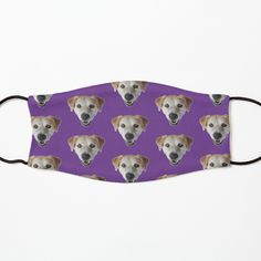 Iphone Wallet, Iphone Cases, Animal Faces, Mask For Kids, Floor Pillows, Cool Photos, Dog Cat, Finding Yourself, My Arts