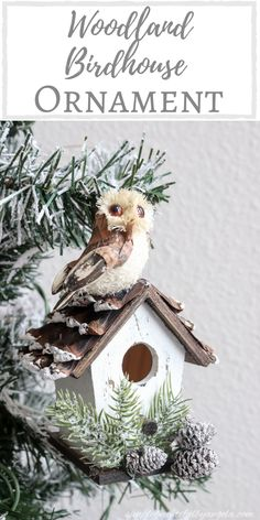 Simply Beautiful By Angela – creating simple beauty on a budget birdhouses rustic Simply Beautiful By Angela Christmas Bird, Woodland Christmas, Christmas Makes, Diy Christmas Ornaments, Rustic Christmas, Christmas Holidays, Christmas Decorations, Birdhouse Designs, Bird Houses Diy