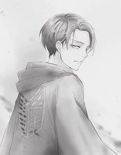 Levi, attack on Titan