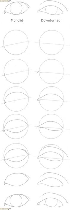 Draw Eyes Realistic How to draw eye shapes Bonus RFA - This step by step tutorial takes you through a very simple process to draw 6 unique eye shapes. You can apply the same techniques to draw other types of eyes. Types Of Eye Shapes, Lip Shapes, Realistic Eye Drawing, Basic Drawing, Drawing Ideas, How To Draw Hair, Learn To Draw, Sketching Techniques, Shading Techniques