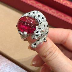 """4,076 свиђања, 54 коментара -  KATERINA PEREZ/КАТЕРИНА ПЕРЕЗ (@katerina_perez) у апликацији Instagram: """"I don't know what I like more in this new Blotie ring from Rèsonance de Cartier high jewellery…"""""""