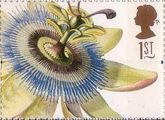 Greetings Stamps. 19th-century Flower Paintings 1st Stamp (1997) Passiflora  coerulea (Ehret)