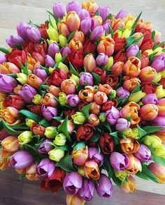 exotic flowers for sale Exotic Flowers, My Flower, Beautiful Flowers, Beautiful Flower Arrangements, Floral Arrangements, Happy Birthday Flower, Tulip Bouquet, Rainbow Roses, Gras