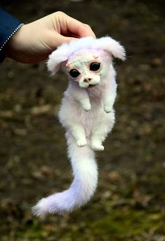 Small Falkor the Luckdragon - Drachen - Plush Cute Fantasy Creatures, Cute Creatures, Magical Creatures, Baby Animals, Cute Animals, Fluffy Cows, The Neverending Story, Soft Sculpture, Dragons