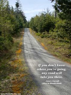 If you don't know where you're going,  any road will take you there.  - Lewis Carroll  (Alice in Wonderland)
