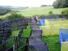 DIY style plastic sheet maze for paintball in the forest of dean...