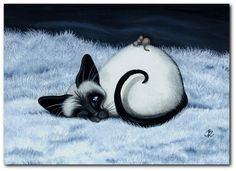 Siamese kitten with little mouse taking a nap on him....but cat has one eye open  :)