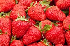 Strawberries Got Healthier : May Lower Blood Cholesterol