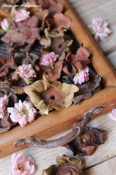 event, garden, craft and pleasure