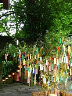 貴船神社の七夕飾りライトアップ - 京都みてあるき
