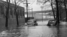 Floodwaters reached a height of more than three feet at South Barrington Street in this photo taken in January 1956, not far from where Dorothy Grant grew up. Above two cars are shown stalled with floodwaters still rising. This picture was taken by Herald staff photographer Bob Norwood near the artificial ice plant at the foot of Inglis Street.