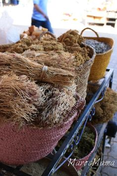 Looking for things to do when visiting Marrakech, Morocco? Step into a holistic medicine shop to purchase some of these natural remedies.