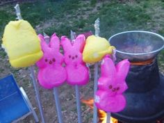 S'mores made with Peeps over a backyard fire pit. Lots of innocent chicks and bunnies died for my kids' amusement.