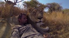 Man Tries to Hug a Wild Lion, You Won't Believe What Happens Next... Wow, amazing!