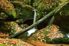 Herbst - under-the-rainbows Webseite!