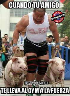 (2) Bestias Del Gym