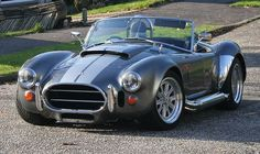 Cobra in gray and silver