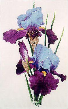 Cross Stitch Craze: Iris Flower Cross Stitch The Dream Maker