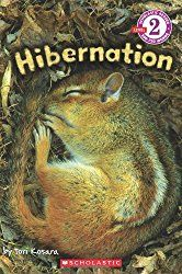 Free Hibernation Activities - Lessons for Little Ones by Tina O'Block
