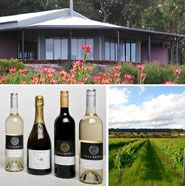 Denmark Wineries, Vineyard and Estates. Visit the Denmark Wineries, amazing cool climate wines on the south coat of Western Australia. Places To Eat, Places Ive Been, Wineries, Western Australia, Wildflowers, Denmark, Acre, Wander, Vineyard